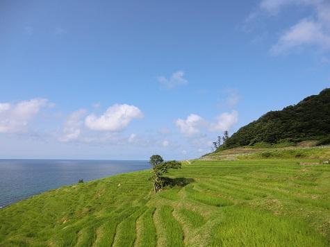 石川県のメロディーロードは日本最長!「まれ」の曲が楽しめる!