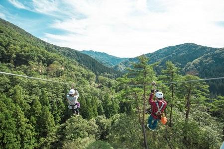 日本一長いのジップライン!福井県のツリーピクニックアドベンチャーとは?
